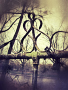 Chained Prints - Old Fence Detail Print by Jill Battaglia