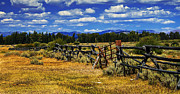 Rail Fence Framed Prints - Old Fence Line Framed Print by Robert Bales
