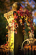 Arkansas Posters - Old Fence Post And Gate With Autumn Leaves Poster by Wesley Hitt
