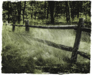 Rail Digital Art Originals - Old Fence by William McCann