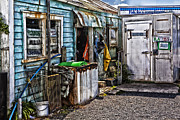 Old Fishing Store At Rawehe Print by Sheila Smart