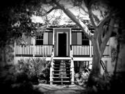 Florida House Photo Metal Prints - Old Florida cottage Metal Print by Perry Webster