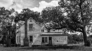 Palatka Prints - Old Florida Farmhouse Print by Lynn Palmer