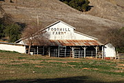 Old Barns Photo Prints - Old Foothill Farms in Small Town of Sunol California . 7D10796 Print by Wingsdomain Art and Photography
