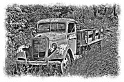 William Havle Art - Old Ford Flatbed BW by William Havle