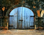 Puerto Rico Posters - Old Fort Doors Poster by Perry Webster