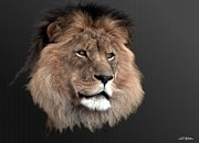 Lion Digital Art Originals - Old Friend by Bill Stephens