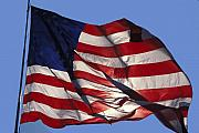 Waving Photos - Old Glory by Carl Purcell