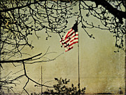 Old Glory Print by Linda Deal