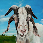 Goat Painting Originals - Old Goat by Cindy D Chinn