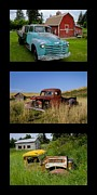 Chevy Pickup Prints - Old Guys 6 Print by Idaho Scenic Images Linda Lantzy