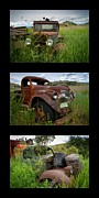 Chevy Pickup Prints - Old Guys 7 Print by Idaho Scenic Images Linda Lantzy