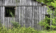 Old Barns Photo Prints - Old Haunts Print by JC Findley