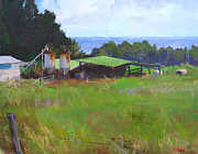 Robert Weiss - Old Honomu Farm