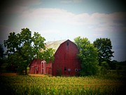 Indiana Trees Photos - Old Indiana Barn by Joyce L Kimble