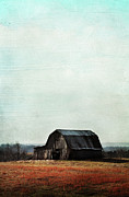 Hand-colored Photos - Old Kentucky Tobacco Barn by Stephanie Frey