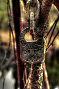 Lock Photos - Old Lock by David Paul Murray