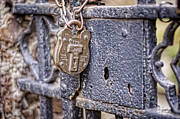 Key Chain Framed Prints - Old Lock Framed Print by Heather Applegate