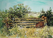 Historic Site Paintings - Old Log Shed by Lynne Haines