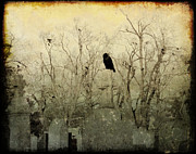 Ravens In Graveyard Framed Prints - Old Necropolis Framed Print by Gothicolors And Crows