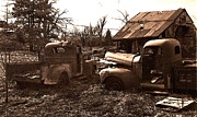 Old Trucks Photos - old Pickup Trucks by Michael Lang