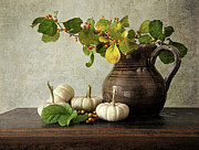 Pumpkins Posters - Old pitcher with gourds Poster by Sandra Cunningham