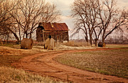 Winter Landscape Photos - Old Red Barn in the Prarie by Iris Greenwell