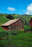Red Buildings Posters - Old Red Barn Poster by Kathy Yates