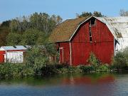 Michigan Fall Colors Posters - Old Red Barn Poster by Scott Hovind