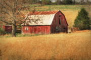 Tamyra Ayles Prints - Old Red Barn Print by Tamyra Ayles