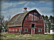 Cupola Posters - Old Red Barn with Cupola Poster by Laurie With