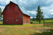 Red Buildings Posters - Old Red Big Sky Barn  Poster by Sandra Bronstein