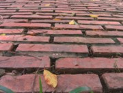 Burned Clay Art - Old Red Brick Road by Yali Shi