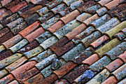 Tiled Framed Prints - Old Roof Tile Framed Print by Gualtiero Boffi