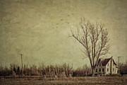 Pond Art - Old rural farmhouse with grunge feeling by Sandra Cunningham