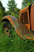 Rusted Cars Prints - Old rusty Fender and Hood Print by Randy Harris