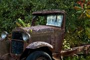 Old Trucks Photo Metal Prints - Old Rusty Metal Print by Ross Powell