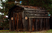 Shed Art - Old Shed Oakhurst by Marjorie Imbeau