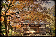 Shrine Photo Originals - Old Shrine in Autum by Tad Kanazaki