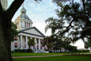 Tallahassee Prints - Old State Capitol Print by Wayne Denmark
