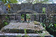 Martha Brae River Prints - Old Sugar Mill Water Wheel Ruins Print by Carol  Bradley - Double B Photography