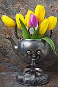 Silver Pitcher Framed Prints - Old tea pot and tulips Framed Print by Garry Gay