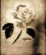 Vintage Looking Prints - Old Time Rose Painting Print by Marsha Heiken