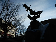 Fort Collins Photos - Old Town Silhouette  by Sara  Mayer