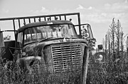 Old Fence Post Framed Prints - Old Truck in the Weeds Framed Print by Wilma  Birdwell