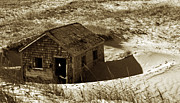 Beach Shack Prints - Old Tyme Cape Cod Print by Skip Willits