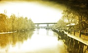 Old Roadway Digital Art Posters - Old Waccamaw River Poster by Robert Hawkins