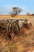 Wagon Photos - Old Wagon in Field by Jill Battaglia