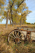 Wagon Photos - Old Wagon by Jill Battaglia