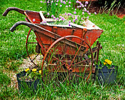 Susan Leggett Art - Old Wheelbarrow by Susan Leggett